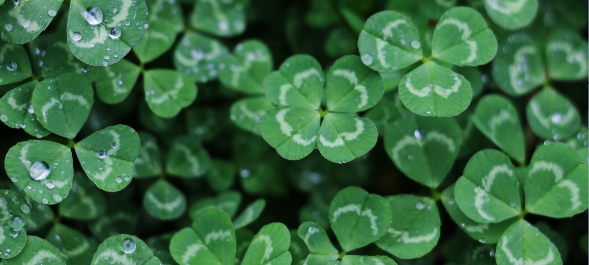 Be lucky: How to stack the odds in your brand's favour