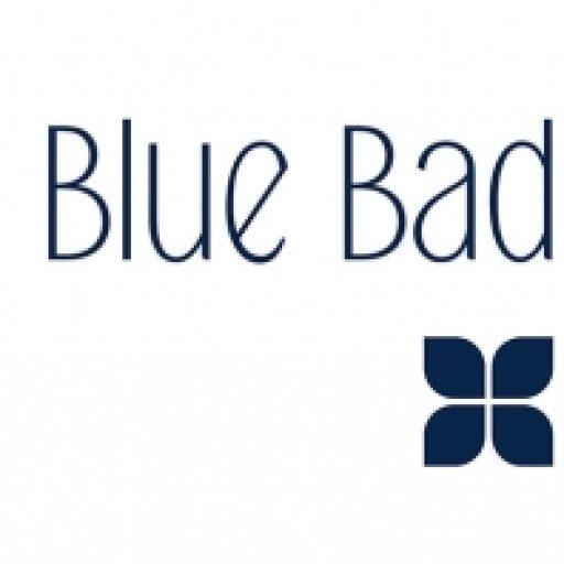 Blue Badge Co